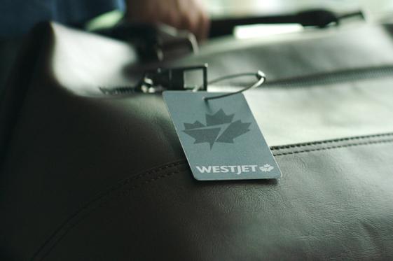 Platinum luggage tag